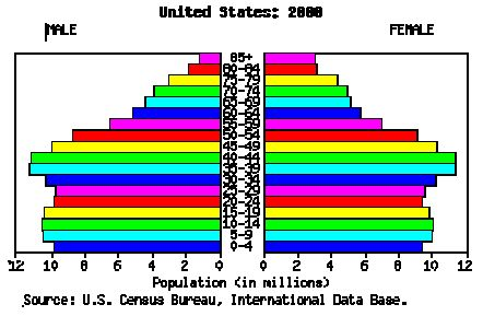 US population age graph from 2000, illustrating the start of the 'bolus' of new gamers being targeted by Nintendo